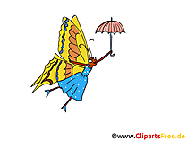 Butterfly Clipart, Comic, Cartoon Image, Pic free