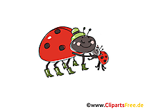 Ladybeetles Comic, Cartoon, Clipart, Bild, Zeichnung, Illustration gratis
