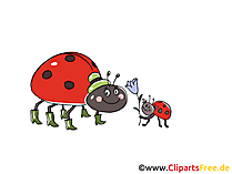 Ladybirds Comic, Cartoon, Clipart, Bild, Zeichnung, Illustration gratis