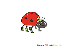 Marienkäfer Comic, Cartoon, Clipart, Bild, Zeichnung, Illustration gratis