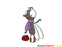 Mosquito, fly cartoon picture, clip art, illustrazione
