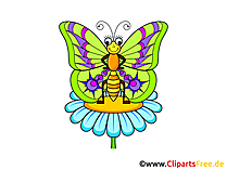 Schmetterling Bild, Clip Art, Illustration, Grafik