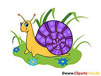 Insekten Bilder, Cliparts, Gifs, Illustrationen, Grafiken ...