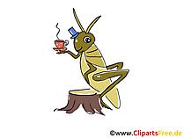 Çay içme, çekirge karikatür, çizgi film, küçük resim, resim, çizim, illüstrasyon