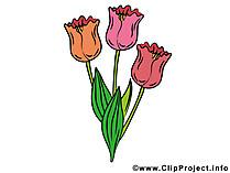Cipartチューリップ