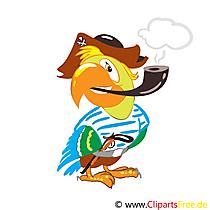 Clipart Papagei-Pirat Grafik kostenlos