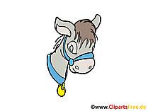 Donkey Clip Art, Image, Pic free