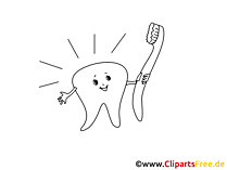 Tooth Clip Art black and white