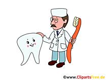Diş ve Diş Hekimi clipart, resimler, grafikler, çizimler