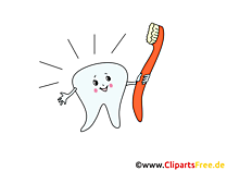 Zahn und Zahnbürste Bilder, Cliparts, Grafiken