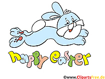 面白いイースターのウサギとイースター写真