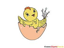 Osternest Clipart-Grafik