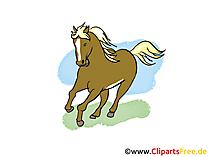 Abbildung Pferd