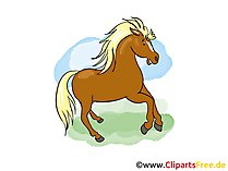 Bilder zu Pferden
