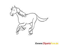 Bleistiftzeichnungen Pferde