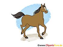 Cartoon paard gratis