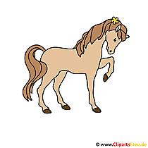 Cartoon Zeichnung Pferd kostenlos