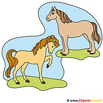 漫画の絵の馬 - クリップアート無料