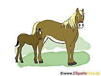 クリップアートの馬