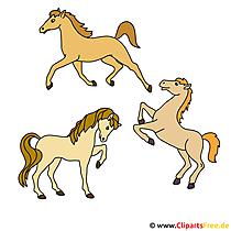 3頭の馬クリップアート