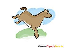 無料クリップアート馬