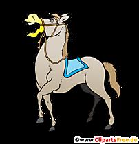 clipart kuda jantan dengan latar belakang transparan