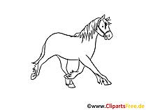 馬のクリップアート黒と白