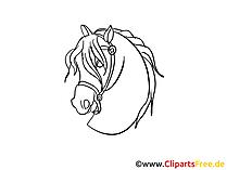 Paardenhoofd draw, clip art, cartoon