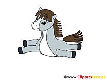 Gratis afbeeldingen van paarden, gifs, graphics, cliparts