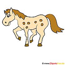 Laufendes Pferd Clipart-Bild
