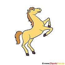 Paard op achterbenen Clipart beeld