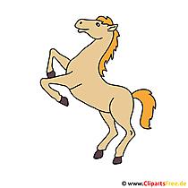 Paard op twee benen Afbeelding cliparts