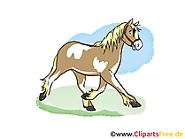 Bedava at clipart