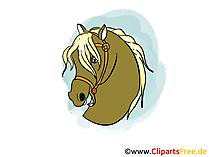 馬の頭の絵、デッサン、漫画