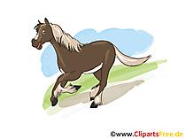 馬の描画黒と白