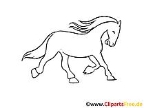 Pferd Zeichnungen