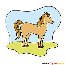 Pferd zum Reitern Bild - Clipart