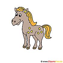 Pferdbild gratis