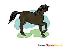 Atlar resim, küçük resim, çizgi film, çizim