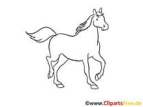Pferde gezeichnet