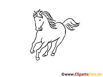 黒と白の馬の絵