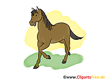 Pferdebilder Cartoons, Cliparts, Grafiken. Zeichnungen