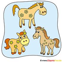 馬の写真クリップアート