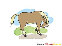 Pferdebilder gemalt
