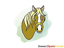 馬の頭のイメージ、クリップアート、漫画、グラフィック