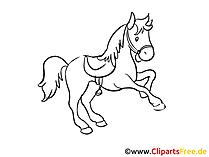Pferdezeichnungen