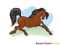 Koşu Atı Clipart, Pic, Image
