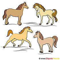 スポーツ馬画像 - 無料グラフィックアート