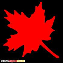 Ahorn Clipart PNG transparent