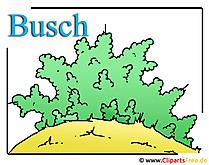 ブッシュクリップアート画像